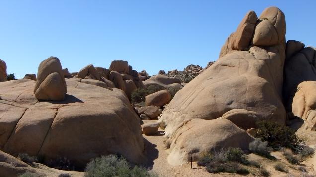 Jumbo Rocks Conans Corridor trail DSCF0831