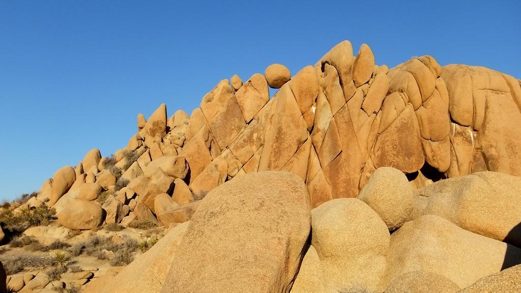 Jumbo Rocks DSCF1259