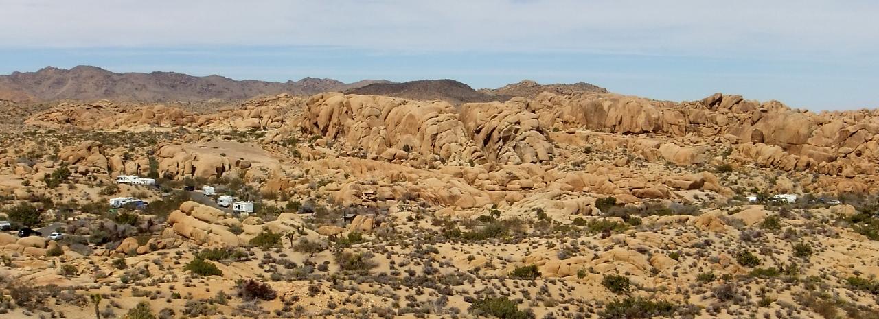 Jumbo Rocks DSCF3124a