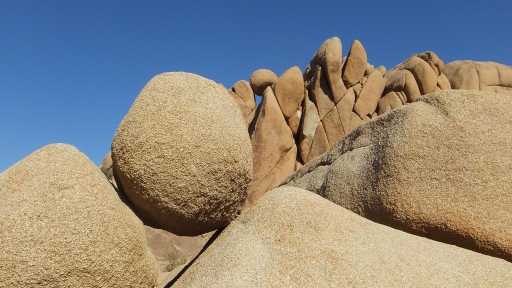 Jumbo Rocks DSCF6101