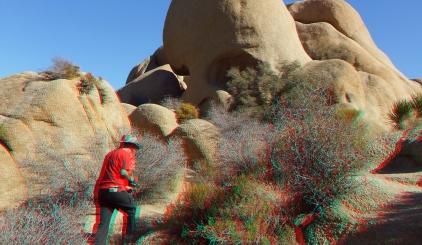Jumbo Rocks Skull Rock area 3DA 1080p DSCF6071