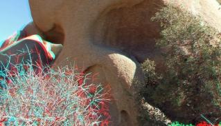 Jumbo Rocks Skull Rock area 3DA 1080p DSCF6072