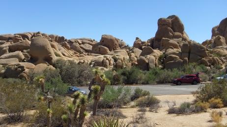 Jumbo Rocks Skull Rock area DSCF0645