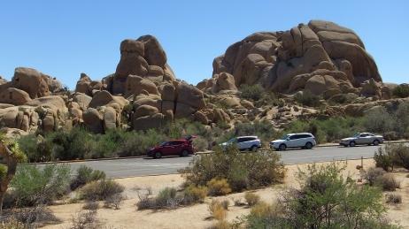 Jumbo Rocks Skull Rock area DSCF0646