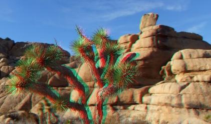 Jumbo Rocks The Wedge area 3DA 1080p DSCF0893