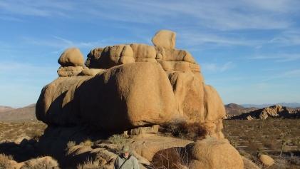 Jumbo Rocks The Wedge area DSCF0928