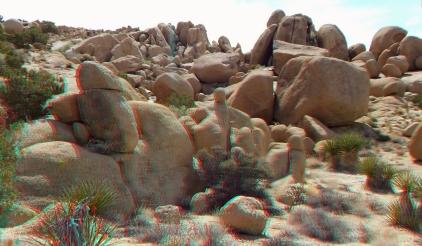 Live Oak Picnic Area 3DA 1080p DSCF3274