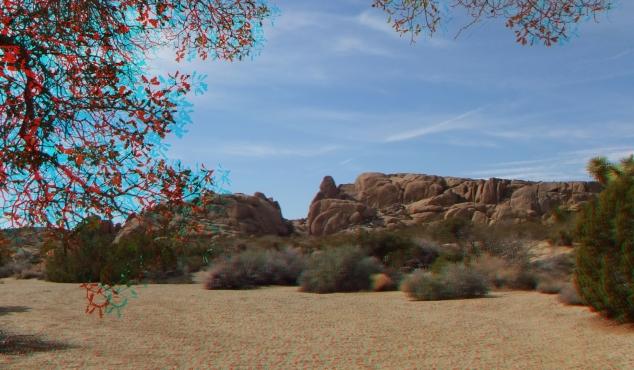 Live Oak Picnic Area 3DA 1080p DSCF3462