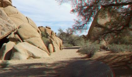 Live Oak Picnic Area 3DA 1080p DSCF3472