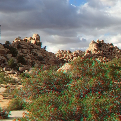 Patagonia Pile Joshua Tree NP 3DA 1080p DSCF2170
