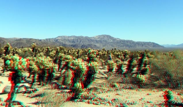 Pinto Mountain 3DA 1080p DSCF5861