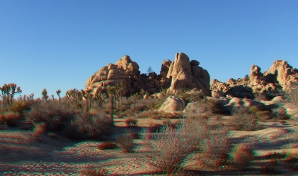 Steve Canyon Joshua Tree NP 3DA 1080p DSCF0704