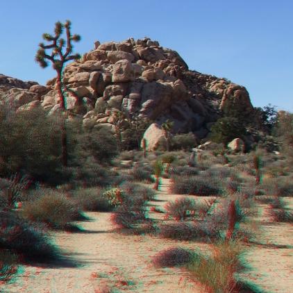 Anthrax Rock Joshua Tree 3DA 1080p DSCF1028