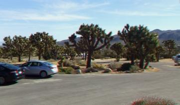 Black Rock Campground Joshua Tree NP 3DA 1080p DSCF3487