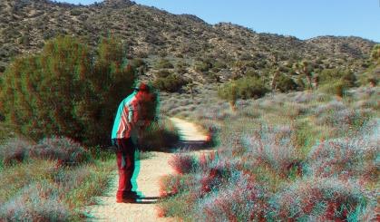 Black Rock Hi-View Trail 3DA 1080p DSCF3519