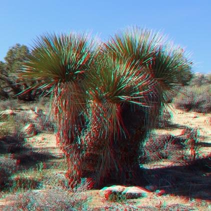 Black Rock Hi-View Trail 3DA 1080p DSCF3533