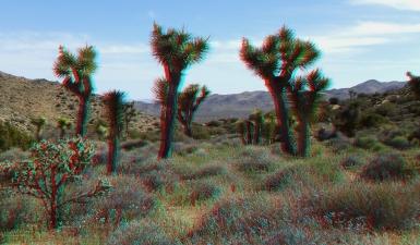 Black Rock Hi-View Trail 3DA 1080p DSCF3580