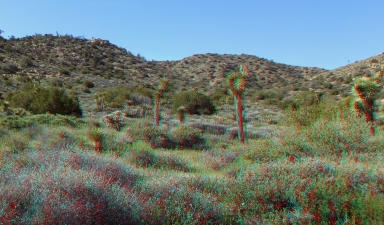 Black Rock Hi-View Trail 3DA 1080p DSCF3583