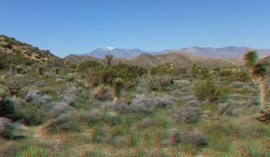 Black Rock Hi-View Trail 3DA 1080p DSCF3584
