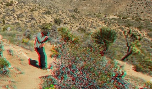 Black Rock Hi-View Trail 3DA 1080p DSCF3652