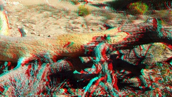 Black Rock Hi-View Trail 3DA 1080p DSCF3653