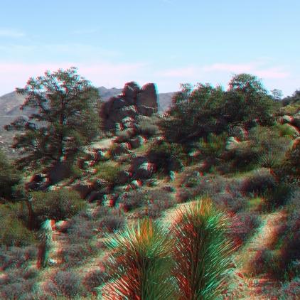 Black Rock Hi-View Trail 3DA 1080p DSCF3656