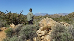 Black Rock Hi-View Trail DSCF3571