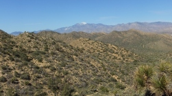 Black Rock Hi-View Trail DSCF3613