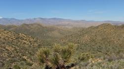 Black Rock Hi-View Trail DSCF3614