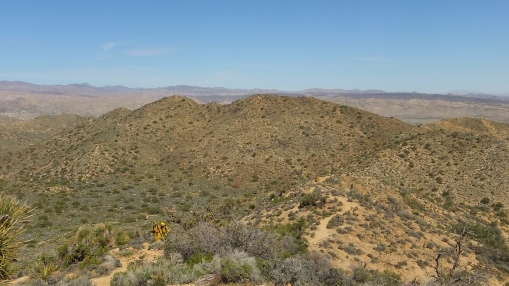 Black Rock Hi-View Trail DSCF3615