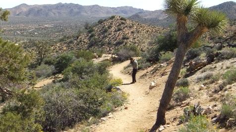 Black Rock Hi-View Trail DSCF3641