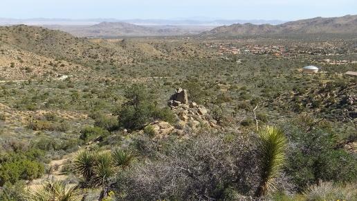 Black Rock Hi-View Trail DSCF3650