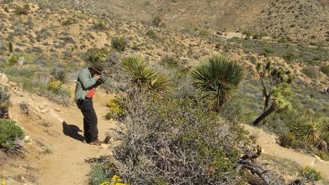 Black Rock Hi-View Trail DSCF3652