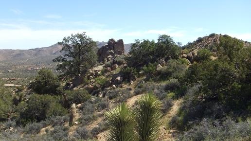 Black Rock Hi-View Trail DSCF3656
