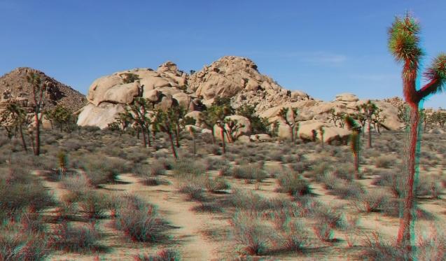 Dinosaur Rock Joshua Tree NP 3DA 1080p DSCF0904