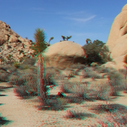 Dinosaur Rock Joshua Tree NP 3DA 1080p DSCF1016