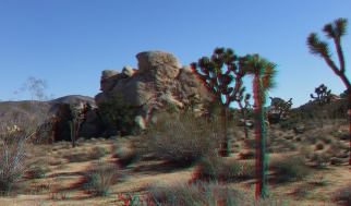 Dinosaur Rock Joshua Tree NP 3DA 1080p DSCF1141