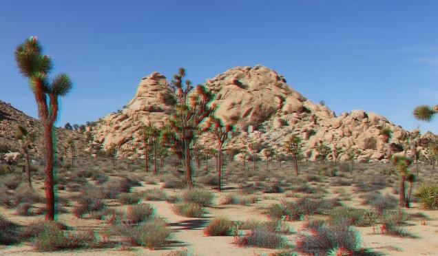 Dutzi Rock Joshua Tree NP 3DA 1080p DSCF1025