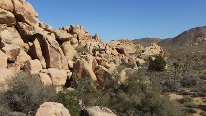 Dutzi Rock Joshua Tree NP DSCF1076