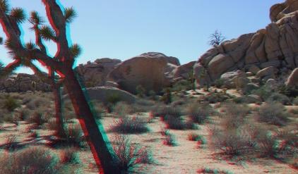 Rock Hudson Rastafarian Rock 3DA 1080p DSCF0883
