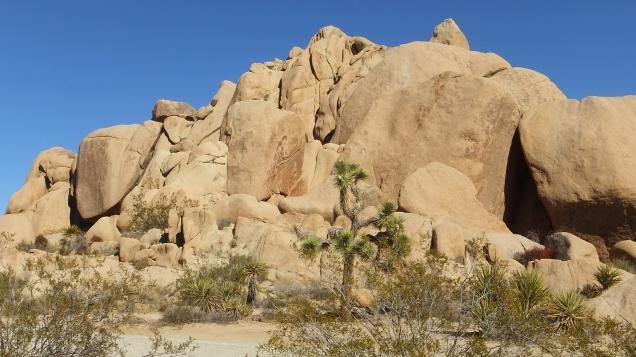 Split Rock Joshua Tree NP DSCF8559