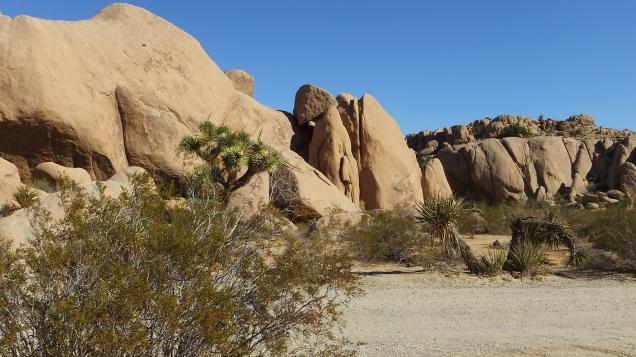 Split Rock Joshua Tree NP DSCF8560