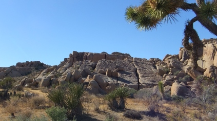 Split Rock Joshua Tree NP DSCF8882