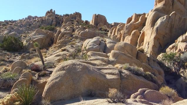 Split Rock Joshua Tree NP DSCF8929