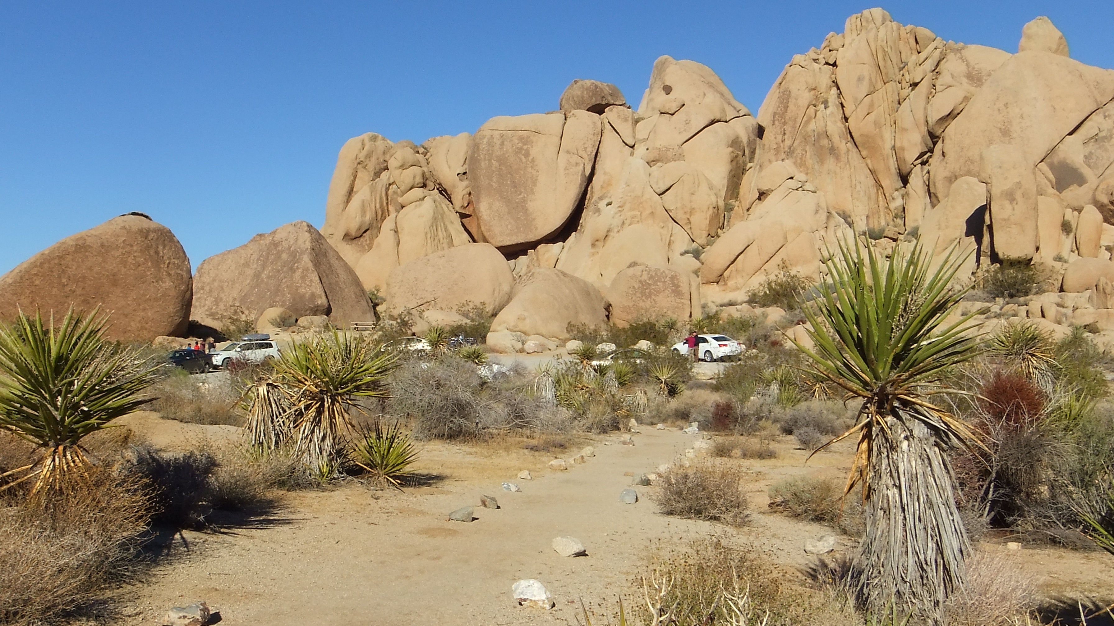 Split Rock Picnic Area Joshua Tree 3D