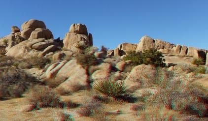 Split Rock Loop Trail 3DA 1080p DSCF8954