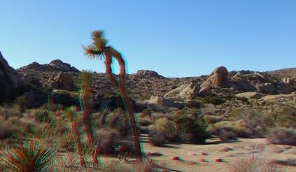 Split Rock Loop Trail 3DA 1080p DSCF9025