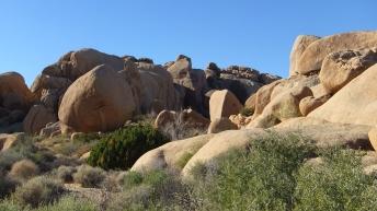 Split Rock Loop Trail DSCF8962
