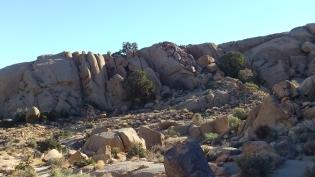 Split Rock Loop Trail DSCF9046