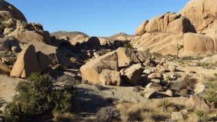 Split Rock Loop Trail DSCF9066